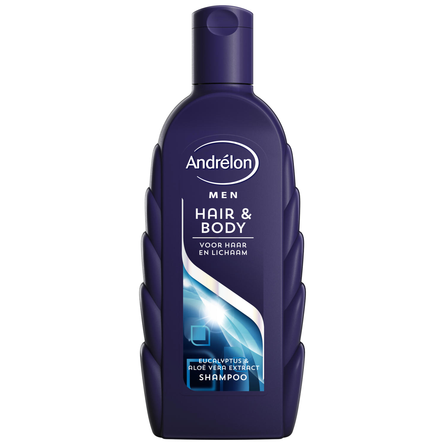 Andrelon Classic Hair Body Men SH 300ml 8710447321669
